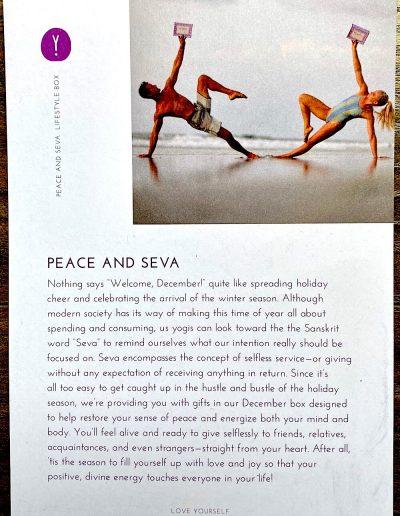 """""""Peace and Seva"""" Theme"""
