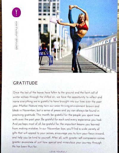 """Gratitude"" Theme"